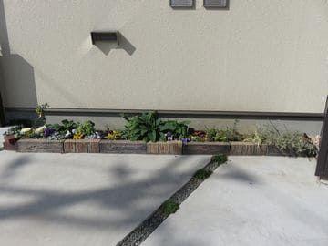 2019年2月の駐車場花壇