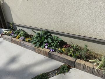 駐車場花壇の全景