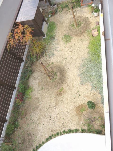 上から見た庭