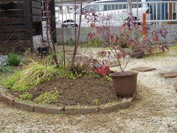 拡張した植栽スペース