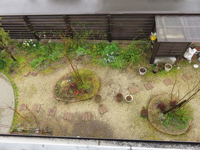 雨の庭の全景
