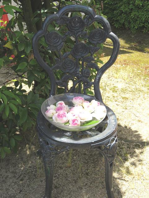 RSKバラ園の園内に飾られていたバラ