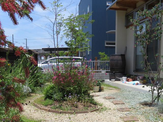 2019年5月末の庭の画像