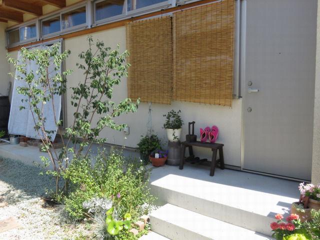 2019年6月の庭 玄関先のジューンベリー