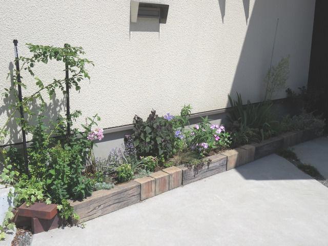6月の花壇の様子