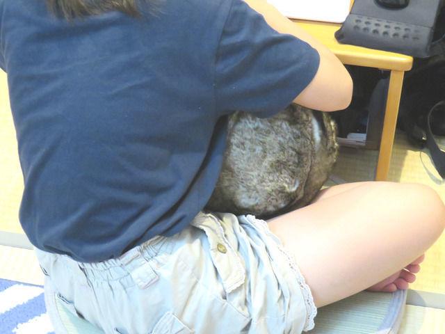 ニトリ アクセントクッション ファーボールを抱っこしている娘