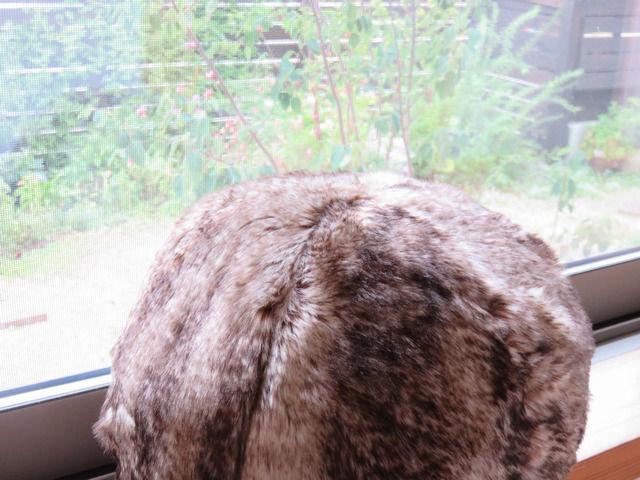 ニトリ アクセントクッション ファーボールをネコみたいにしている画像
