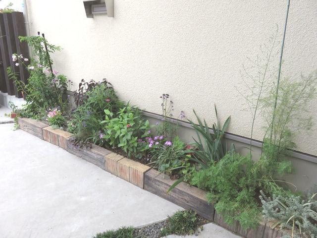 バーベナ・メテオールシャワーを植えた花壇の全体