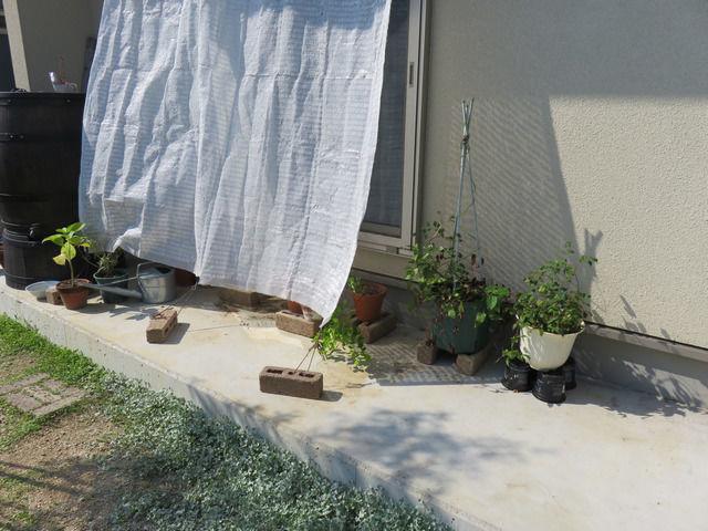 遮光ネットで日よけをした掃き出し窓
