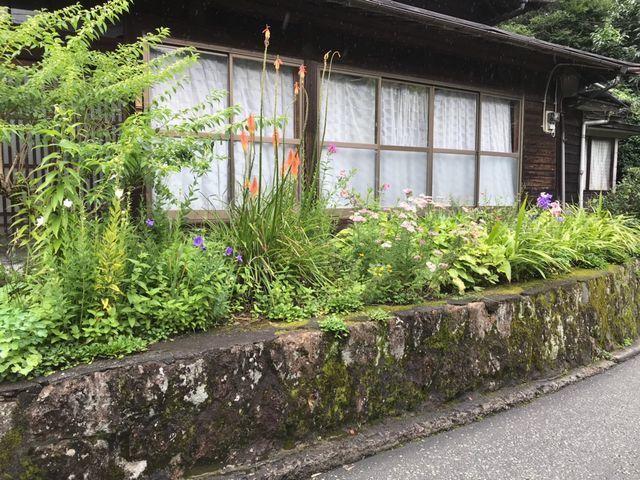 黒川温泉でみつけたボーダーガーデン Japanese BorderGarden