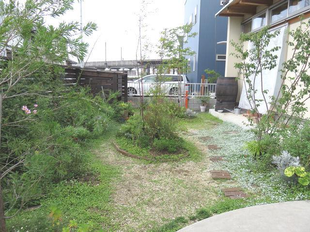 2019年8月後半の庭の様子