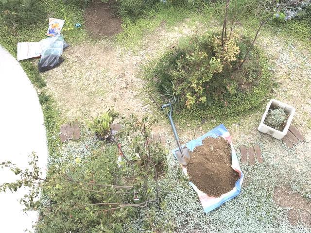 庭仕事をしている庭の状態