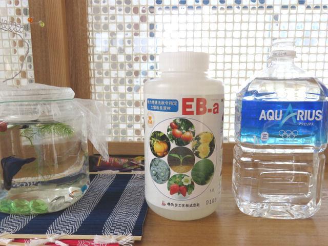 eb-aボトルの大きさ比較