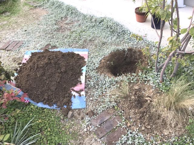 穴掘り作業途中