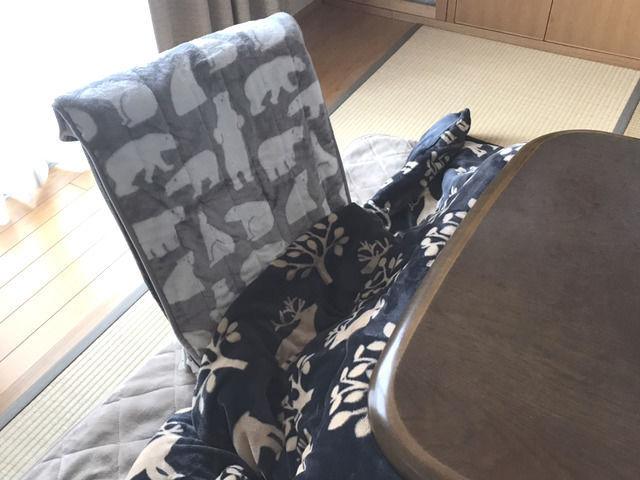 コタツと座椅子の画像