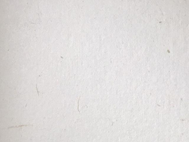 月桃紙の壁紙のアップ画像