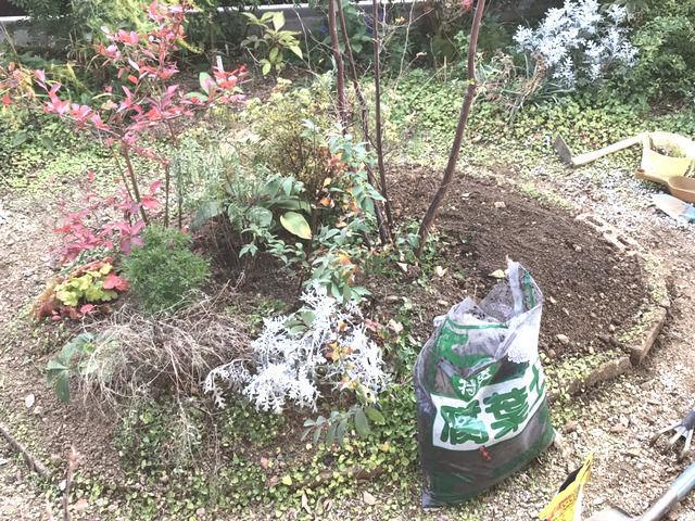 植栽と土壌改良の作業