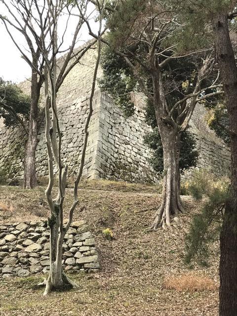 丸亀城の散歩コース