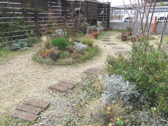 2020年1月の庭の様子