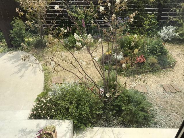 2020年4月の庭の様子