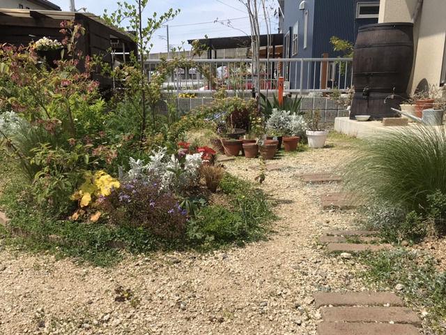 エゴノキの足元の植栽表側