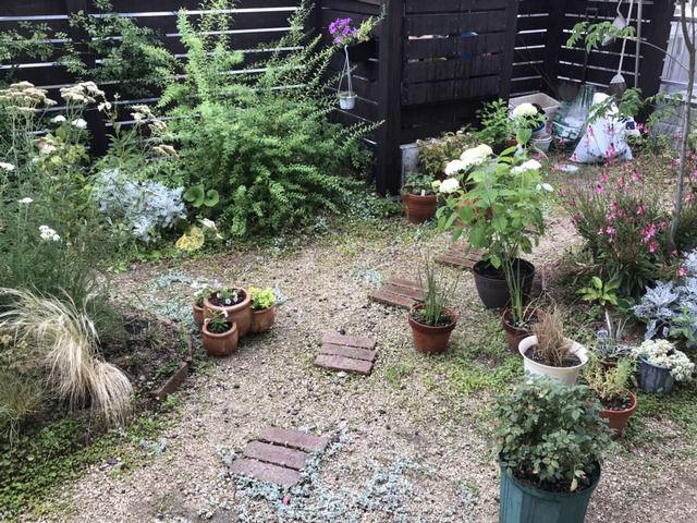 梅雨で雨が降っている庭の様子