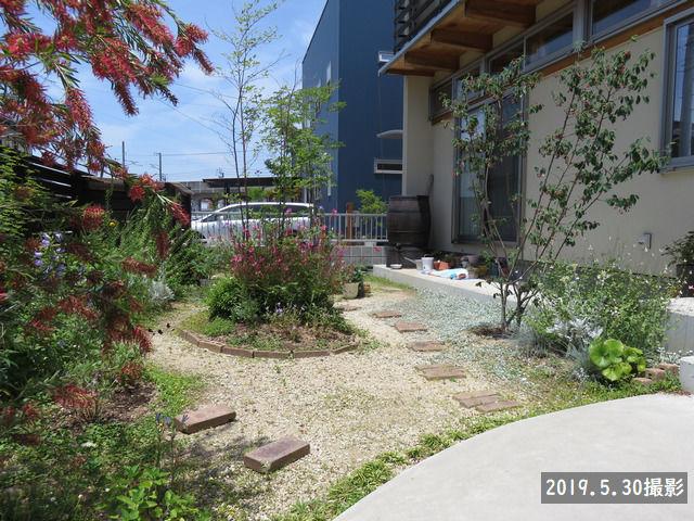 2019年5月30日の庭の写真
