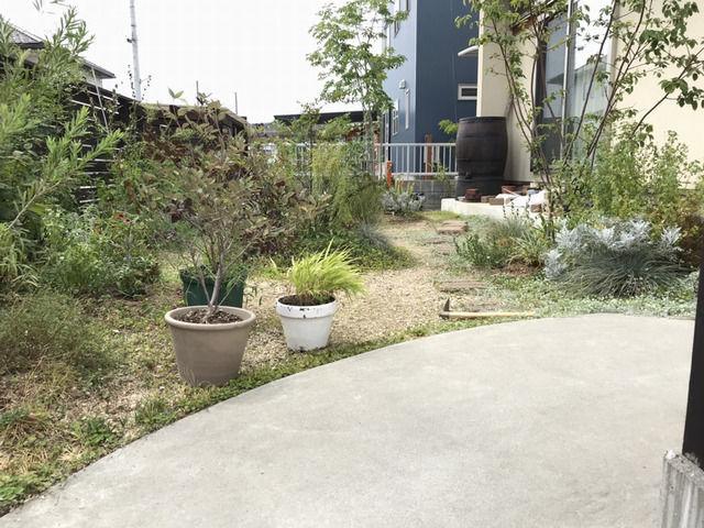 庭の目隠しのシミュレーション