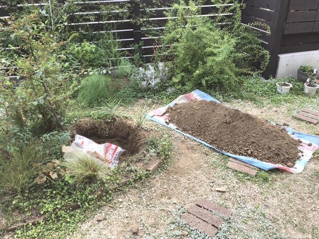 エゴノキの周囲を掘っている様子