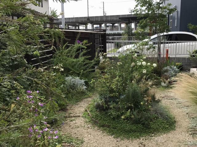 前年の庭の様子