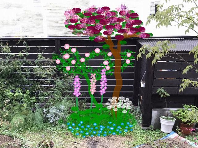 庭の改造プラン スモークツリーグレースとピンクのバラ