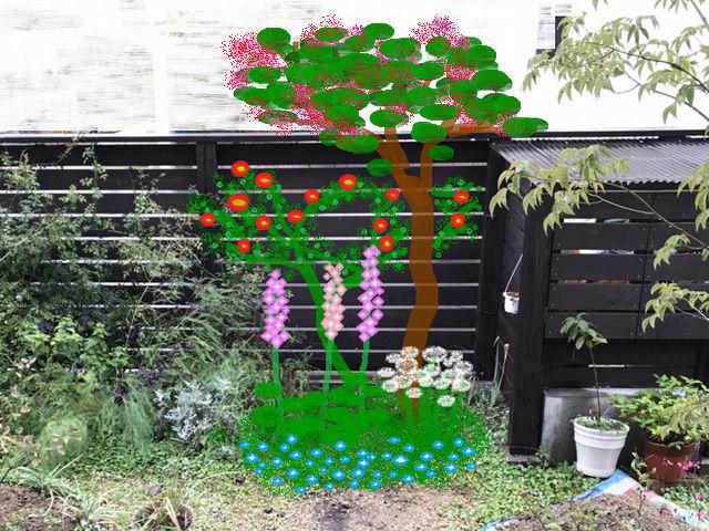 庭の改造プラン カクテルとスモークツリー