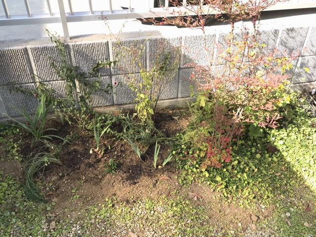 植え替えした庭の一部