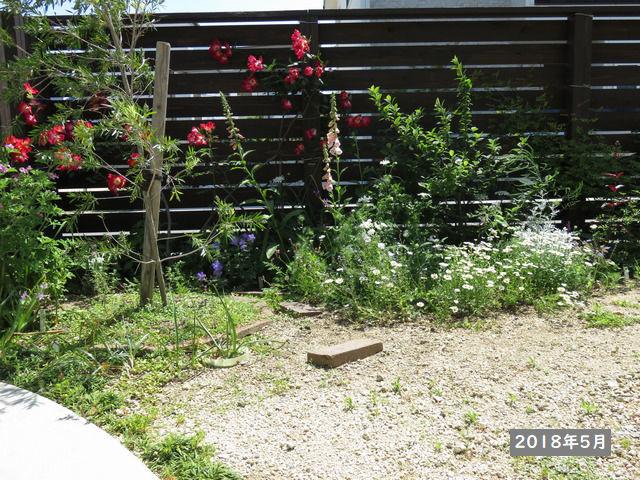 2018年5月の庭