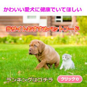 f:id:tonikakuganbaru:20160604154116j:plain