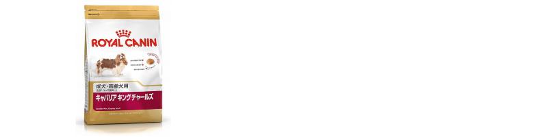 f:id:tonikakuganbaru:20161103102058j:plain