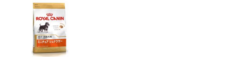 f:id:tonikakuganbaru:20161103105446j:plain