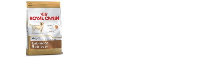 f:id:tonikakuganbaru:20161103111228j:plain