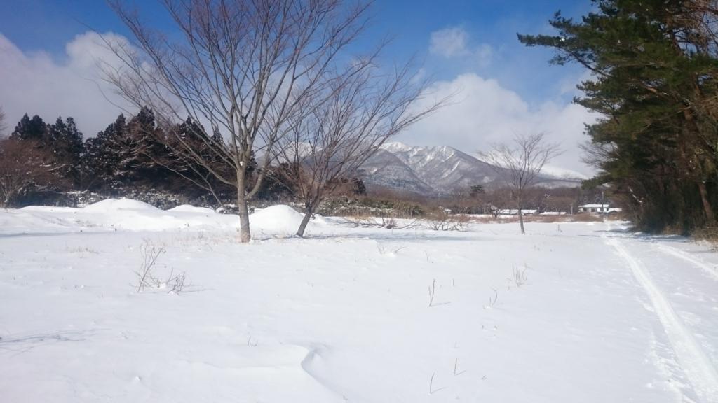 f:id:tonkachinomori:20170127204558j:plain