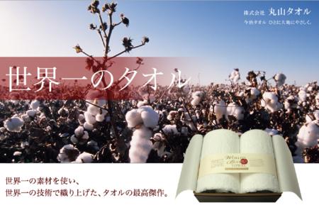 f:id:tonogata:20141122123449p:plain