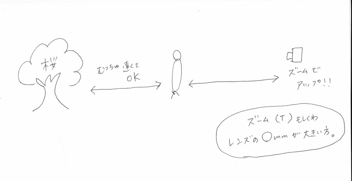 f:id:tontanusagi:20190331215227j:plain