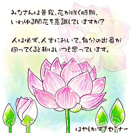 f:id:tool10reiya592:20210701210629j:image