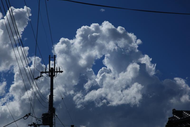 f:id:toonii:20120819151435j:image