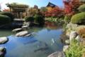 『京都新聞写真コンテスト 秋の瓢箪池』