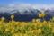 『京都新聞写真コンテスト 比良山系を望む』
