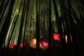 『京都新聞写真コンテスト 和傘アート』