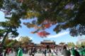 『京都新聞写真コンテスト 写真スポット』