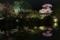 『京都新聞写真コンテスト 東寺夜の庭園』