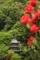 『京都新聞写真コンテスト 三重塔を眺める』