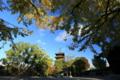 『京都 東寺 世界遺産』